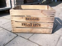 fruitkist Belgie fruit